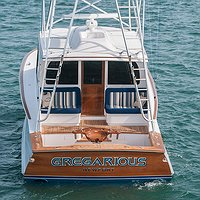 Gregarious Boat Transom
