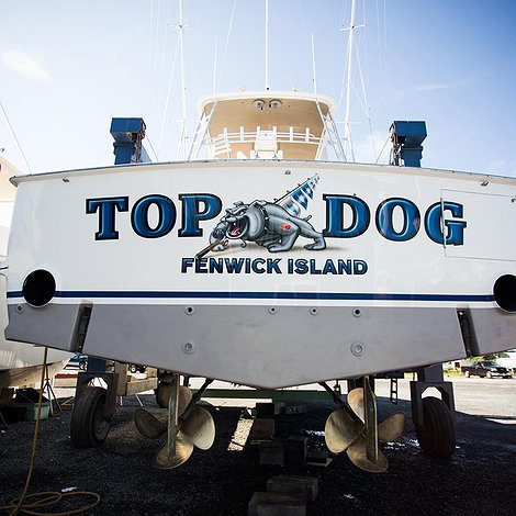 Top Dog, Fenwick Island Boat Transom